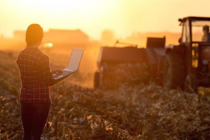 Le linee guida per lo sviluppo dell'agricoltura di precisione