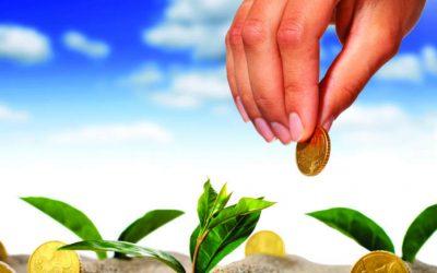 Europa: Politica agricola comune (PAC) 2021. I tagli per regione